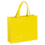 Eco glans gelamineerde non woven draagtas shopper