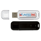 Bedrukte USB stick 2.0 4GB doming