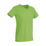 Ben V-neck - Green Flash