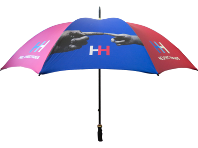 30 inches straight umbrella