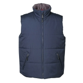 Vest with thermal lining