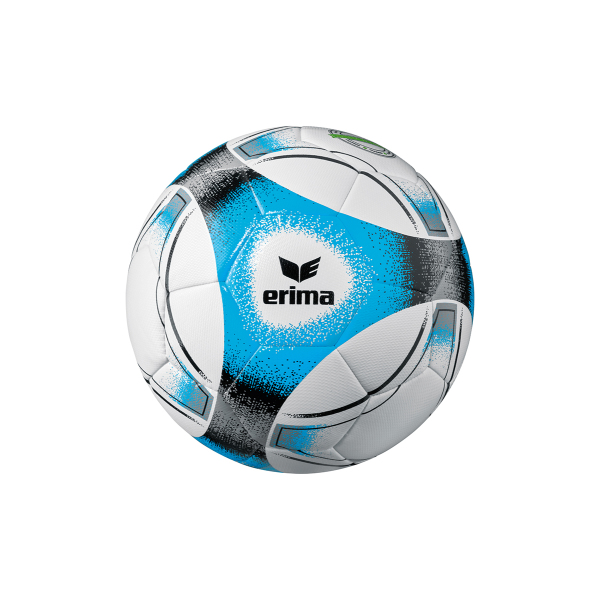 ERIMA Hybrid Training