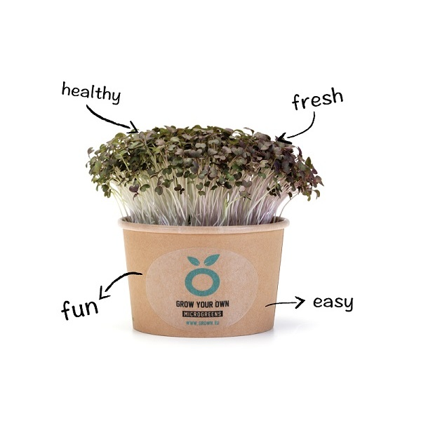 Grown Cress - kweek cup