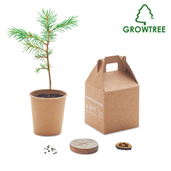 GROWTREE™ - Pijnboom set