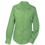 Ladies' Promotion Blouse Long-Sleeved lime