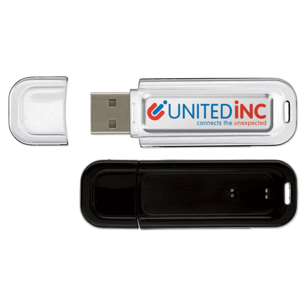 Bedrukte USB stick 2.0 8GB doming