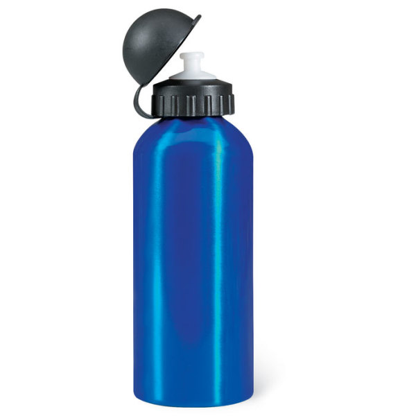 BISCING - Metal drinking bottle (600 ml)