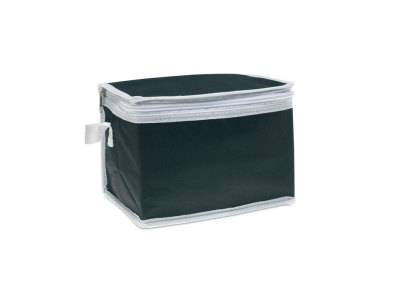 Cooler Bags and Cooler Boxes