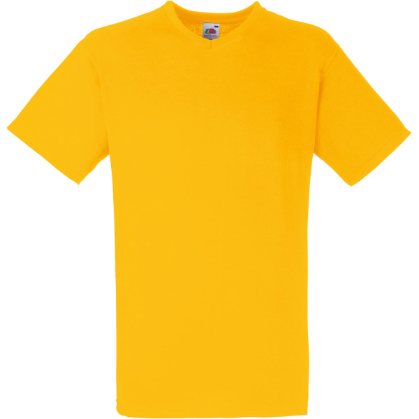 Men's valueweight v-neck t-shirt (61-066-0)