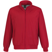 Crew bomber / men red s